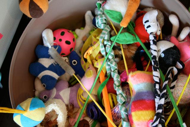 bucket of toys Genki, Mann?